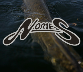 NORIES - Premium Hardbaits & Softbaits aus Japan